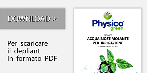 Download Physico Green